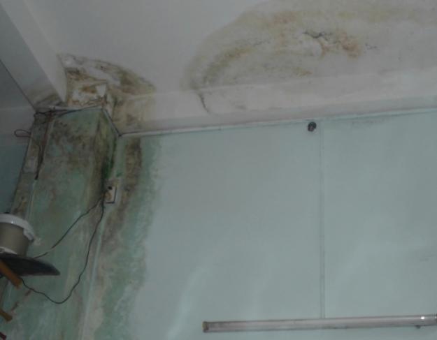 Chống thấm trần nhà bị thấm nước
