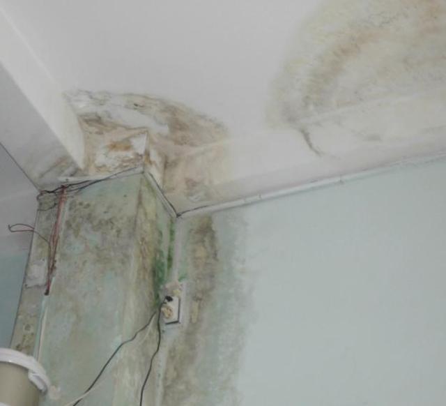 Thấm tường gây nhiều hậu quả nghiêm trọng
