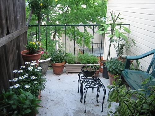 không gian sân vườn