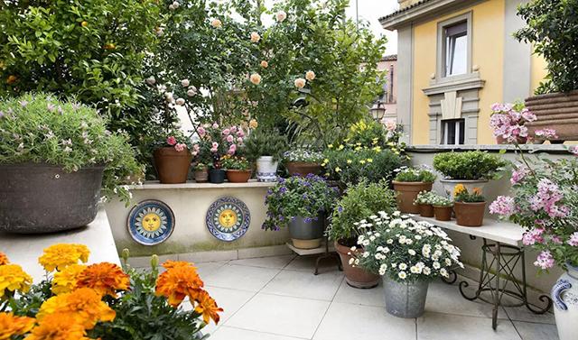 Vườn cây kết hợp với hoa sẽ khiến không gian trở nên sinh động hơn